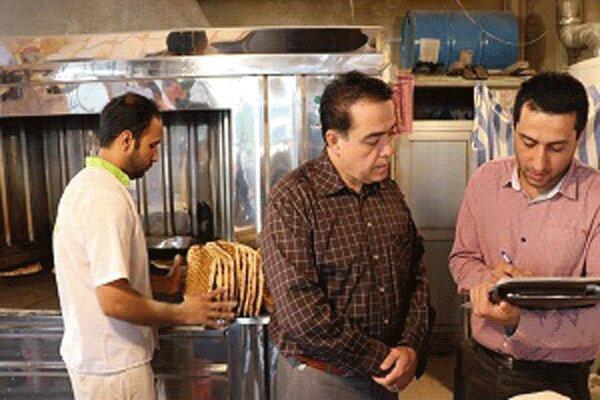 ثبت 635 مورد بازرسی از نانوایی های استان اردبیل