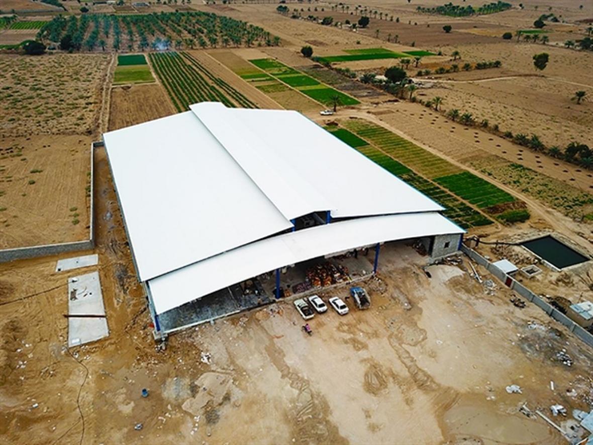 حمایت 59 میلیاردی بانک کشاورزی از راه اندازی طرح بزرگ سورتینگ و سردخانه خرما در استان بوشهر