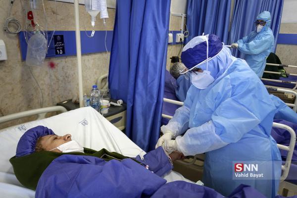 هاشمی: آمار فوتی های روزانه کرونا در پایتخت به 100 نفر رسید