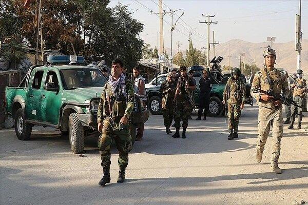 338 نفر از اعضای طالبان در 10 ولایت افغانستان کشته و زخمی شدند
